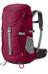 Jack Wolfskin Alpine Trail rugzak rood